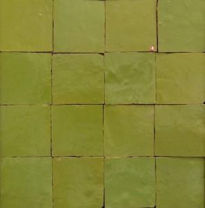 berkane-olive-ZR-1010